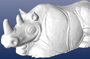 rhino_shaded