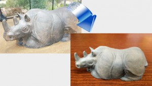 RhinoIntro1